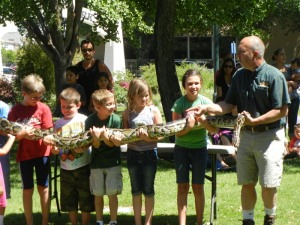 How many kids does it take to hold a Burmese Python?